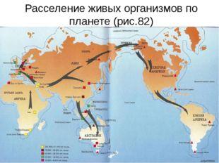 Расселение живых организмов по планете (рис.82)