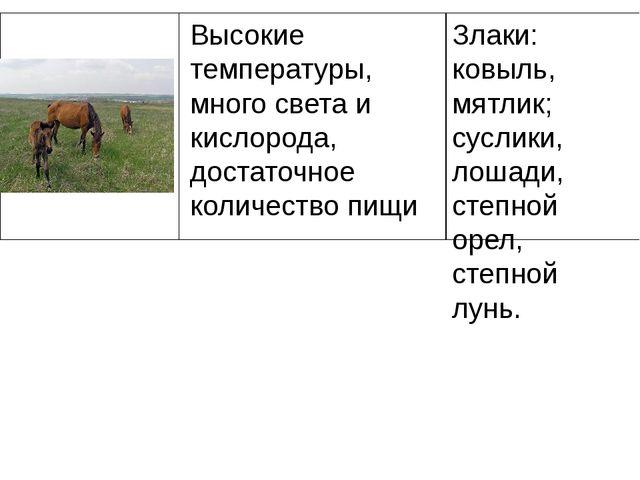 Злаки: ковыль, мятлик; суслики, лошади, степной орел, степной лунь. Высокие т...