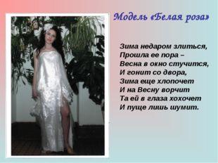 Модель «Белая роза» Зима недаром злиться, Прошла ее пора – Весна в окно стучи