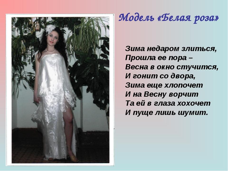 Модель «Белая роза» Зима недаром злиться, Прошла ее пора – Весна в окно стучи...