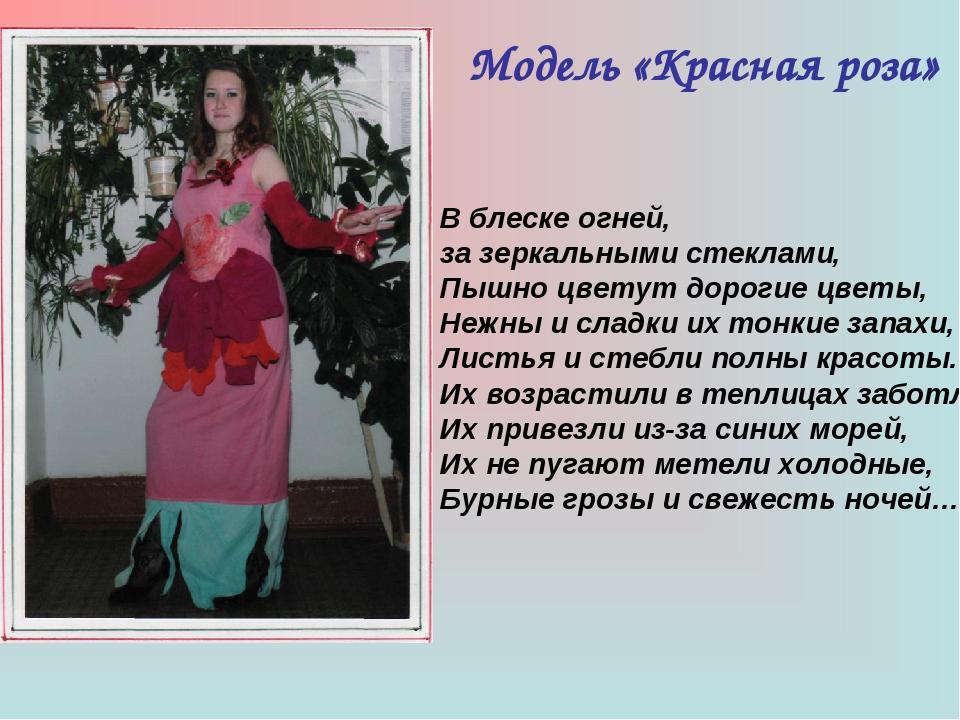 Модель «Красная роза» В блеске огней, за зеркальными стеклами, Пышно цветут д...