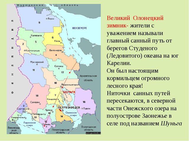 Великий Олонецкий зимник- жители с уважением называли главный санный путь от...