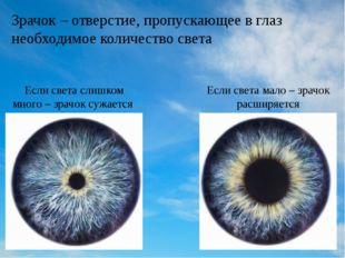 Зрачок – отверстие, пропускающее в глаз необходимое количество света Если све