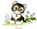 hello_html_m13cec3e5.png