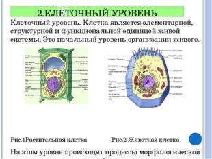 2.КЛЕТОЧНЫЙ УРОВЕНЬ Клеточный уровень. Клетка является элементарной, структур