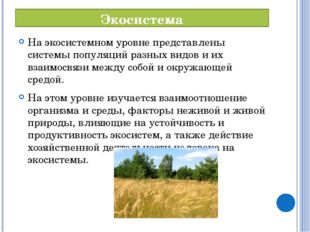 Экосистема На экосистемном уровне представлены системы популяций разных видов