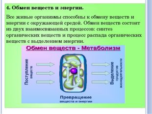4. Обмен веществ и энергии. Все живые организмы способны к обмену веществ и э