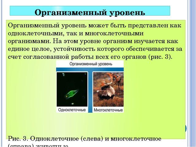 Организменный уровень Организменный уровень может быть представлен как однокл...