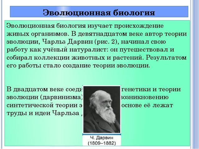 Эволюционная биология Эволюционная биология изучает происхождение живых орган...