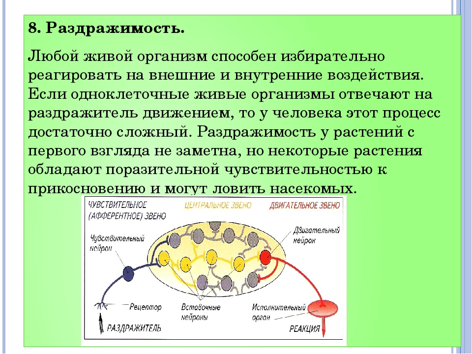 8. Раздражимость. Любой живой организм способен избирательно реагировать на в...