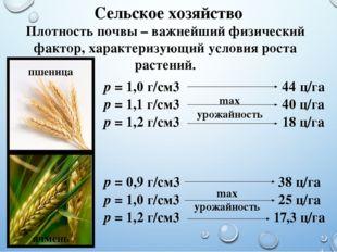 Сельское хозяйство Плотность почвы – важнейший физический фактор, характеризу