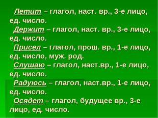 Летит – глагол, наст. вр., 3-е лицо, ед. число. Держит – глагол, наст. вр.,