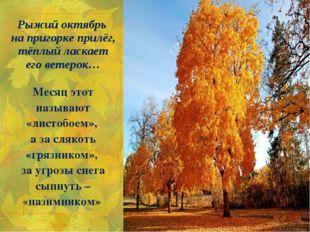 Рыжий октябрь на пригорке прилёг, тёплый ласкает его ветерок… Месяц этот наз