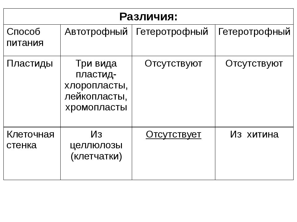 Различия: Способ питания Автотрофный Гетеротрофный Гетеротрофный Пластиды Три...
