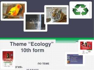 "TESTS (ТЕСТОВЫЕ ЗАДАНИЯ) Theme ""Ecology"" 10th form ПО ТЕМЕ «ЭКОЛОГИЯ» 10 КЛАСС"