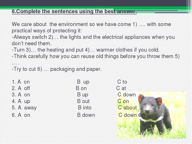 6.Complete the sentences using the best answer.   We care about the environme...