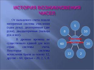 От пальцевого счета пошли пятеричная система счисления (одна рука), десятери