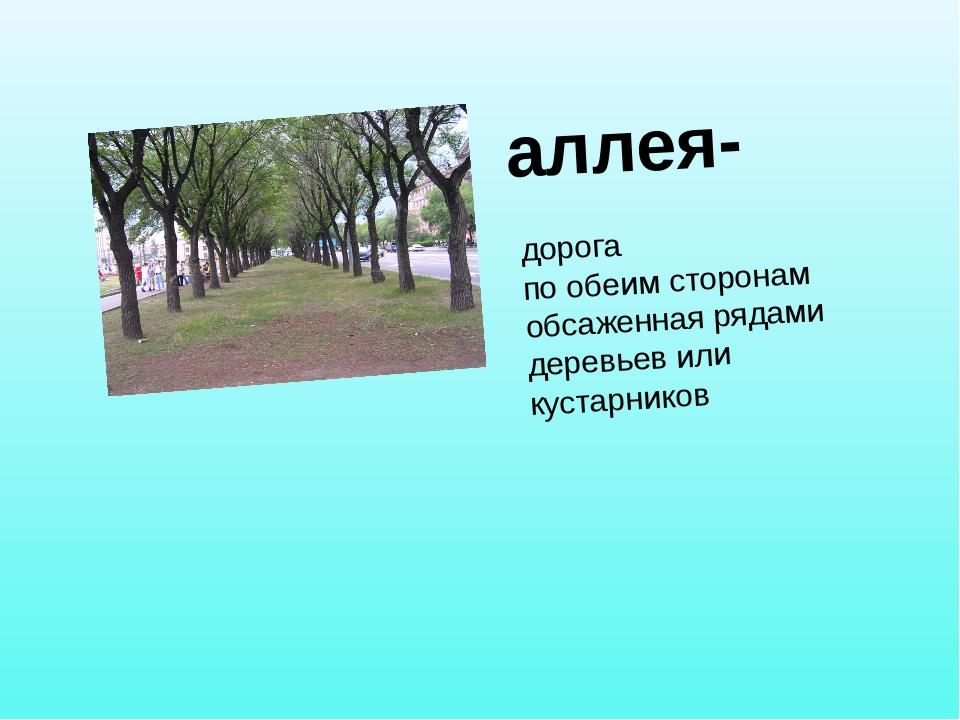 аллея- дорога по обеим сторонам обсаженная рядами деревьев или кустарников