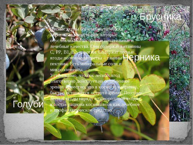 Какие ягоды нашего таёжного края ещё знаете? Голубика Брусника Черника Лесные...