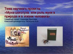 Тема научного проекта: «Муха-цокотуха или роль мухи в природе и в жизни челов