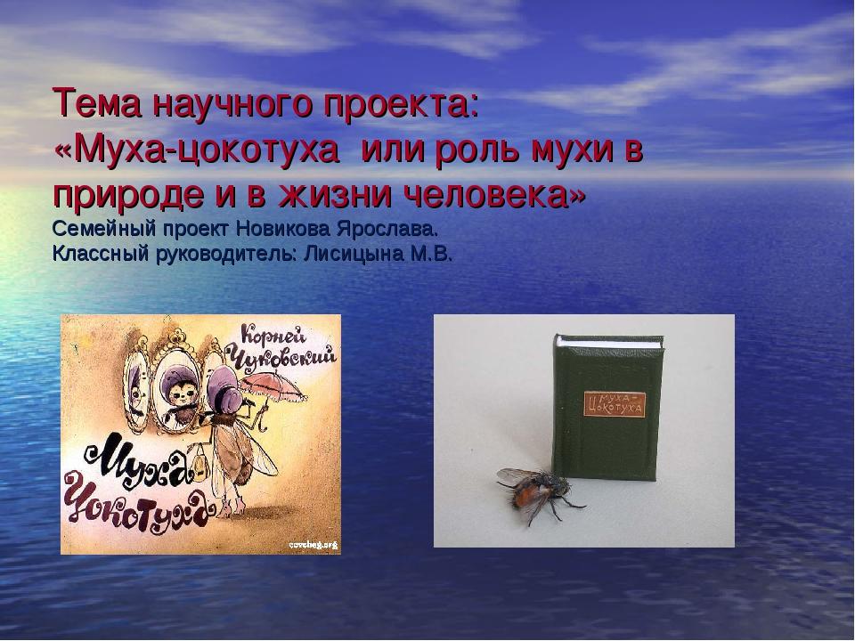 Тема научного проекта: «Муха-цокотуха или роль мухи в природе и в жизни челов...