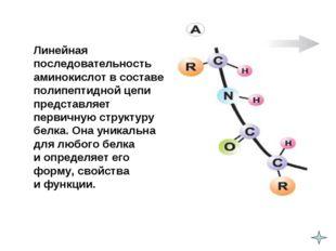 Линейная последовательность аминокислот в составе полипептидной цепи предста