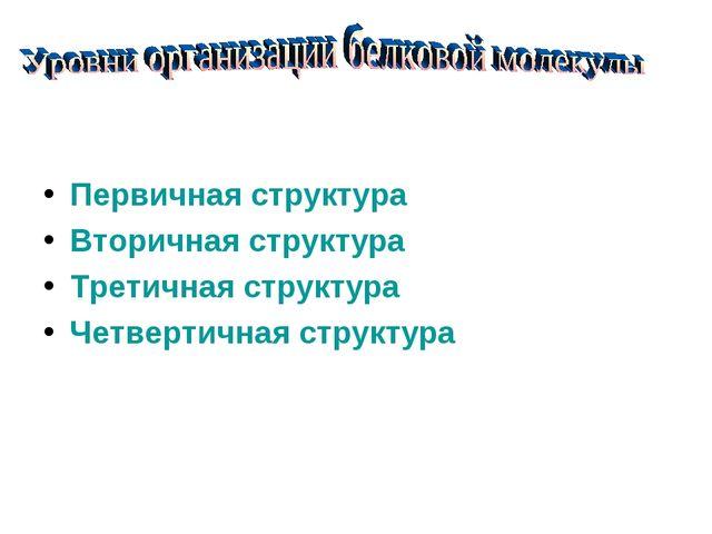 Первичная структура Вторичная структура Третичная структура Четвертичная стр...