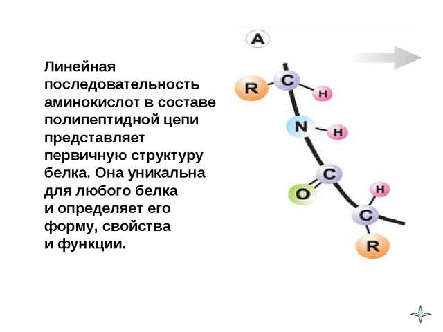 Линейная последовательность аминокислот в составе полипептидной цепи предста...