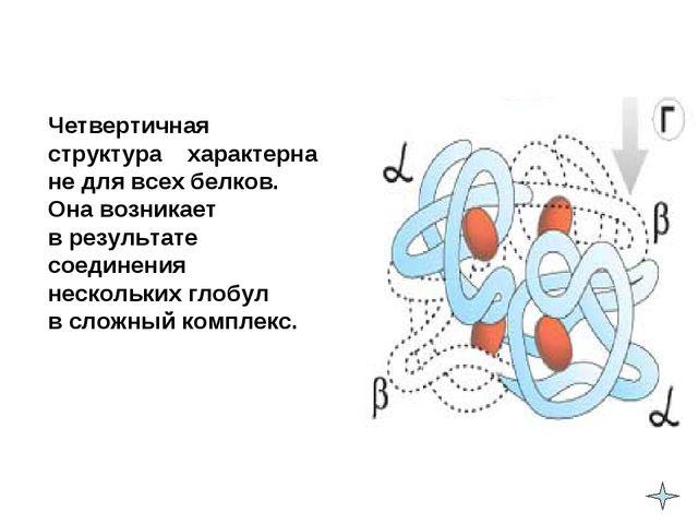 Четвертичная структура характерна не для всех белков. Она возникает в резу...