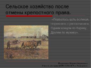 Сельское хозяйство после отмены крепостного права. «Порвалась цепь великая, П