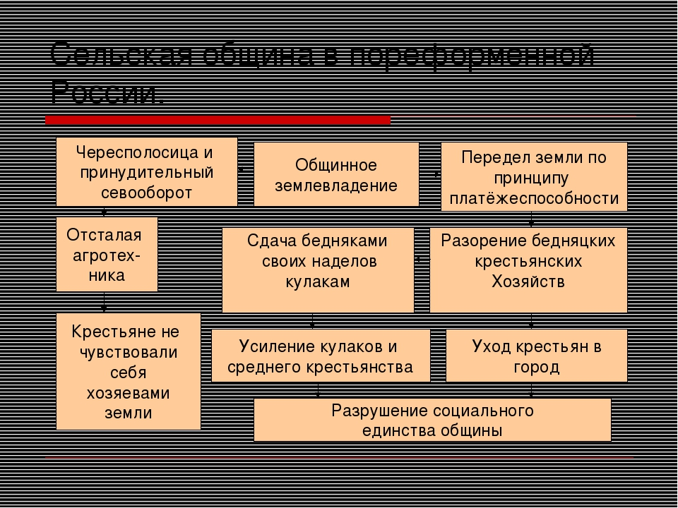 Сельская община в пореформенной России. Общинное землевладение Передел земли...