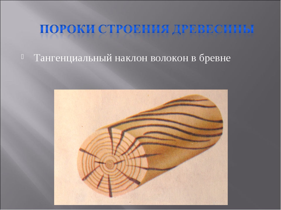 Тангенциальный наклон волокон в бревне