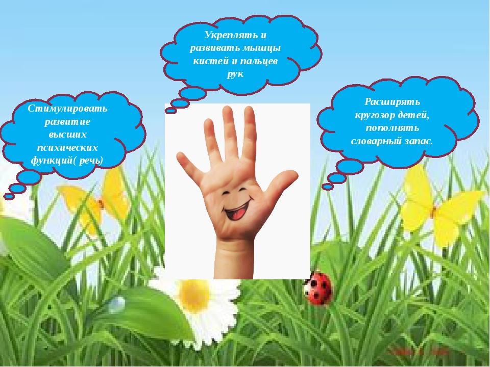 Укреплять и развивать мышцы кистей и пальцев рук Стимулировать развитие высш...