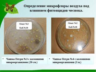 Опыт №2 Каб.№18 Опыт №2 Каб.№18 Определение микрофлоры воздуха под влиянием ф
