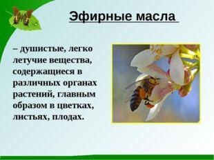 Эфирные масла – душистые, легко летучие вещества, содержащиеся в различных ор