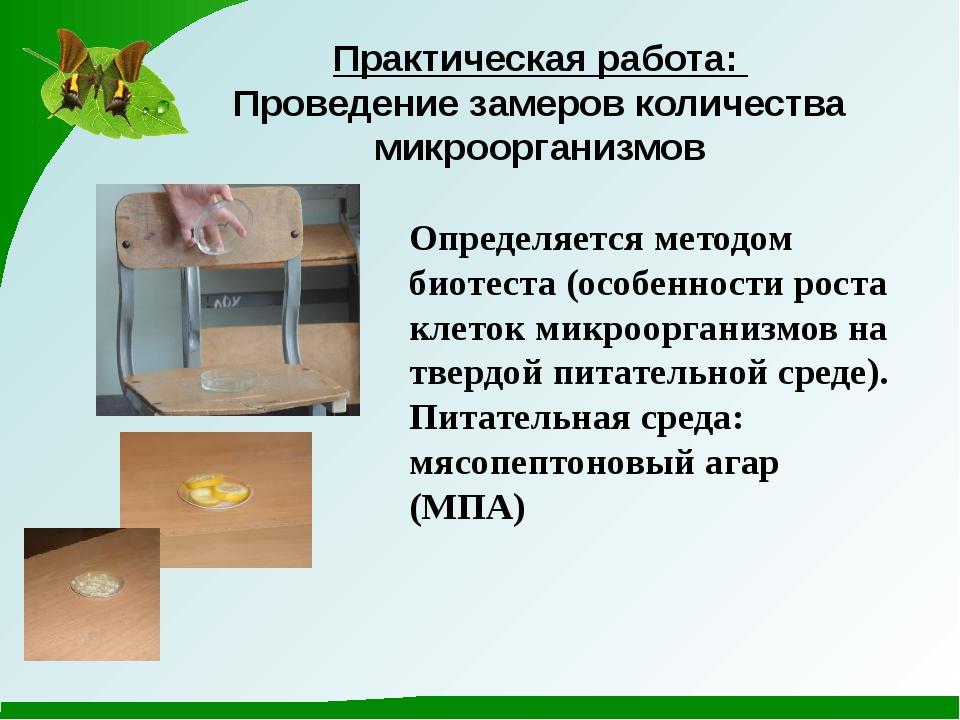 Практическая работа: Проведение замеров количества микроорганизмов Определяет...