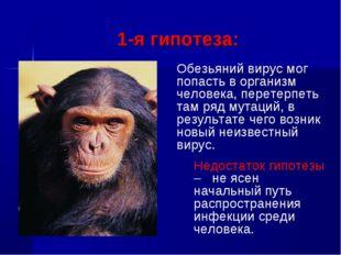 1-я гипотеза: Обезьяний вирус мог попасть в организм человека, перетерпеть т
