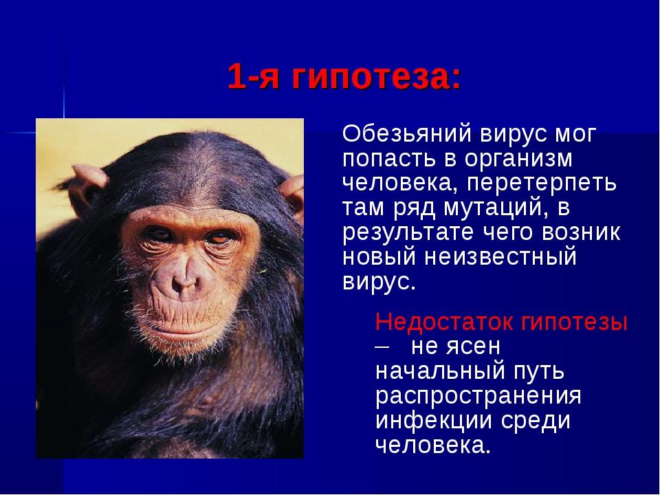 1-я гипотеза: Обезьяний вирус мог попасть в организм человека, перетерпеть т...