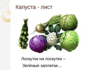 Капуста - лист Лоскуток на лоскутке – Зелёные заплатки…