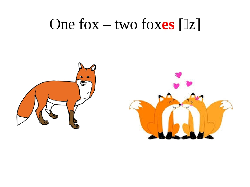 One fox – two foxes [ɪz]