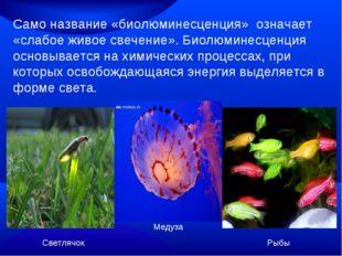 Само название «биолюминесценция» означает «слабое живое свечение». Биолюминес