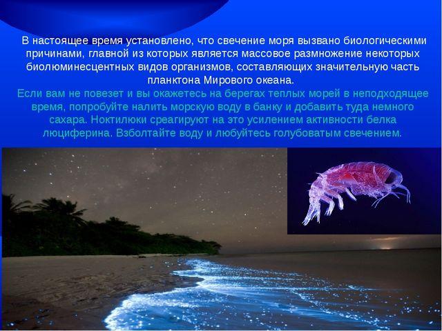 В настоящее время установлено, что свечение моря вызвано биологическими прич...