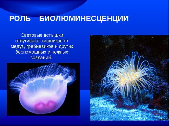 РОЛЬ БИОЛЮМИНЕСЦЕНЦИИ Световые вспышки отпугивают хищников от медуз, гребневи...