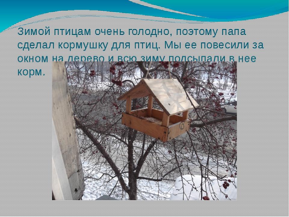 Зимой птицам очень голодно, поэтому папа сделал кормушку для птиц. Мы ее пове...