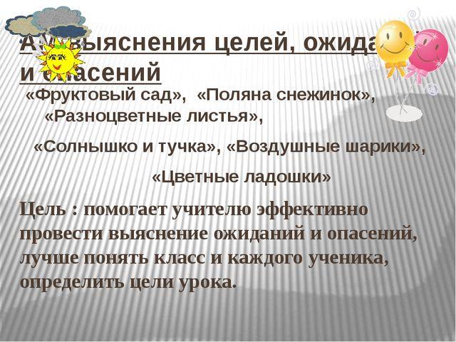 АМ выяснения целей, ожиданий и опасений «Фруктовый сад», «Поляна снежинок», «...
