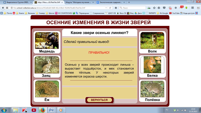 hello_html_m49dbd11d.png