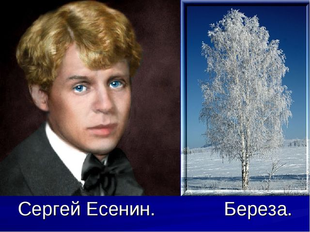 Сергей Есенин. Береза.