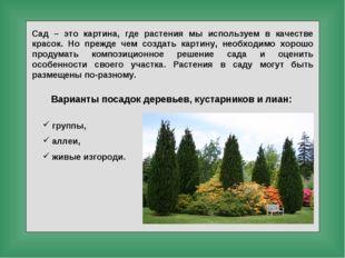 Сад – это картина, где растения мы используем в качестве красок. Но прежде че