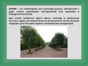Аллея – это пешеходная или проезжая дорога, обсаженная с двух сторон деревьям