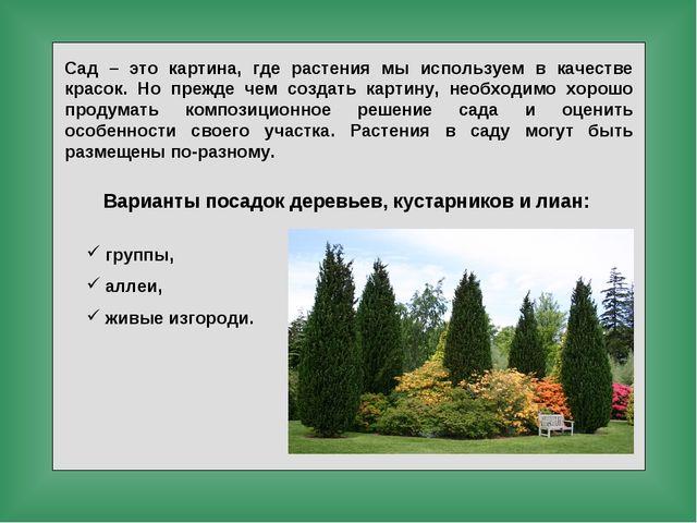 Сад – это картина, где растения мы используем в качестве красок. Но прежде че...